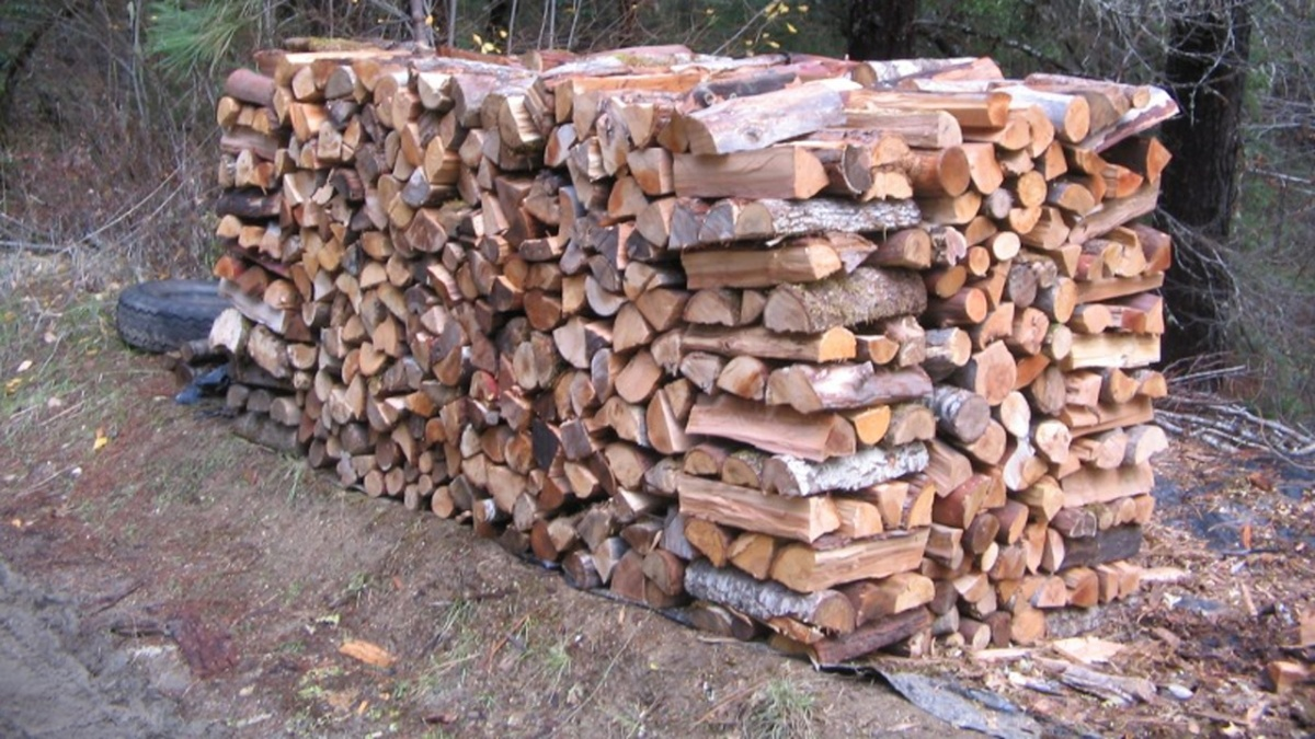 Over 80% of Maine Fathers' Affection Is Directed at Their WoodPiles